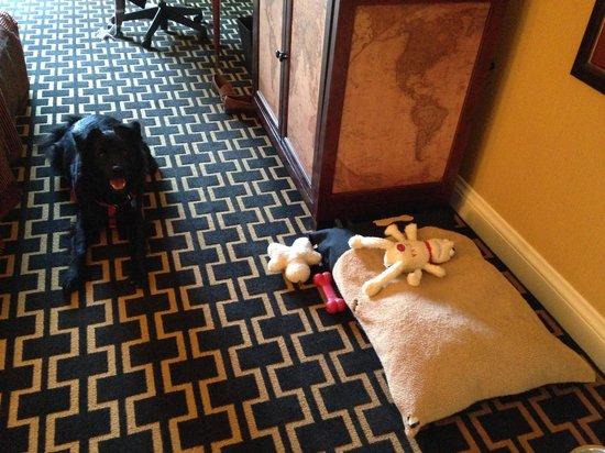 Kimpton Marlowe Hotel: Dog set up!