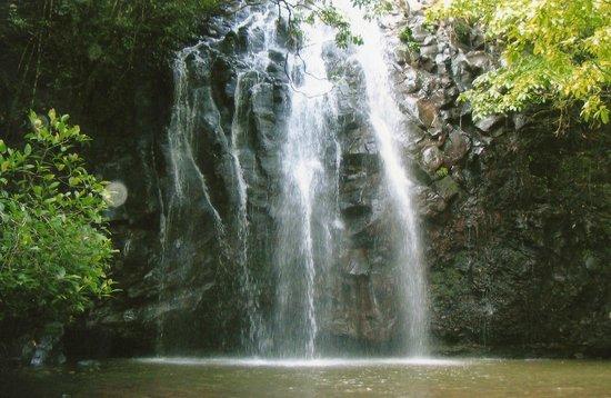 Northern Explorer Tours: Ellinjaa Falls