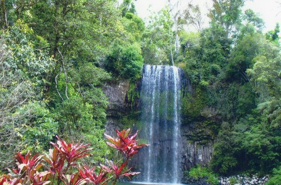 Northern Explorer Tours: Millia Millia Falls