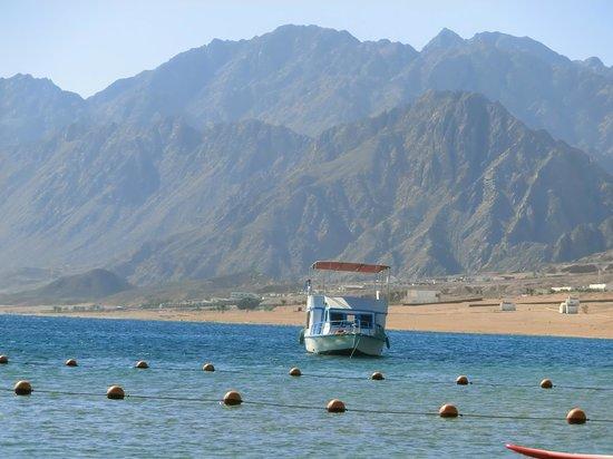 Jaz Dahabeya: Aussicht am Strand