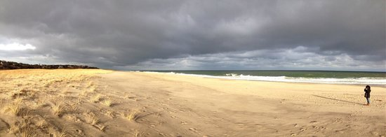 Nauset Beach in Winter