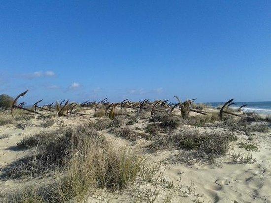 Praia do Barril : Ship anchor graveyard.