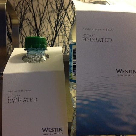 The Westin Snowmass Resort : You can either drink the free water or the $3.00 water.  Your choice.