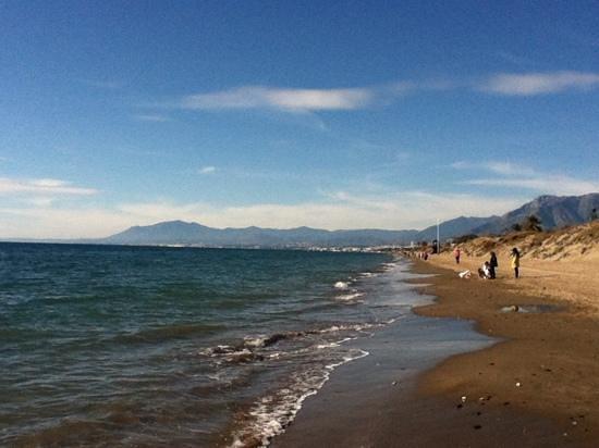 Ona Alanda Club Marbella: Beach nearby during January