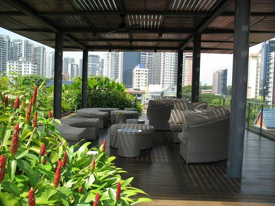 The Forest by Wangz: Roof terrace