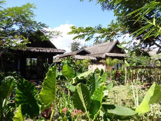 La Maison Birmane: Zona común/jardín