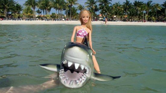Hotel Barcelo Maya Beach : Ocean fun