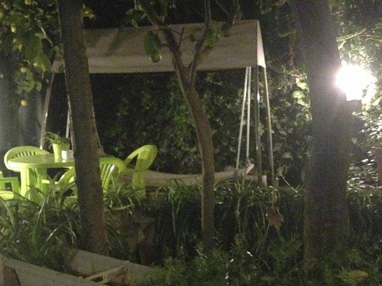 The Garden Backpacker : giardino