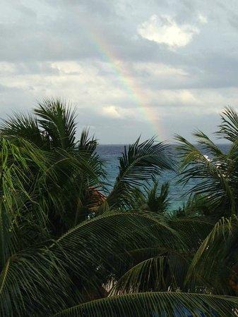 El Cid La Ceiba Beach Hotel: True Paradise