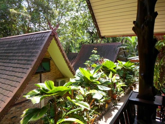 Khao Sok Las Orquideas Resort : Aussicht