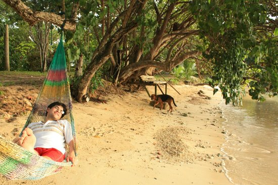 Half Moon Beach : hammocks