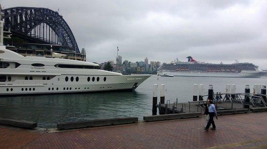 Circular Quay: little dinghy