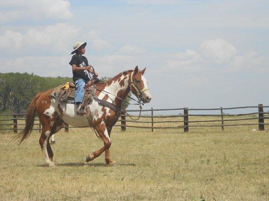 Vee Bar Guest Ranch: Gymkhana! (summer guest ranch program)