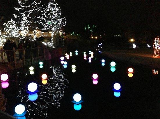 Cincinnati Zoo & Botanical Garden: Fetival of Lights Cincinnati Zoo