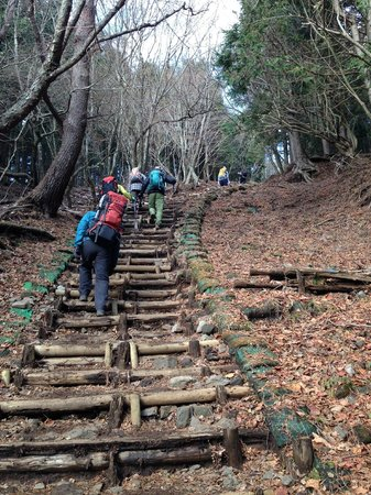 Mt. Tonotake: 急な階段道