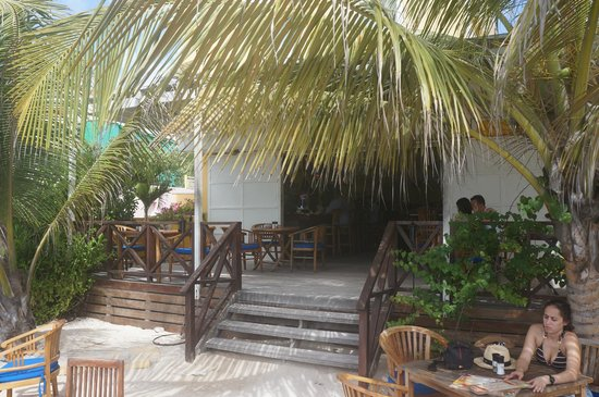 Scuba Lodge & Suites: Looking back at the bar from the water