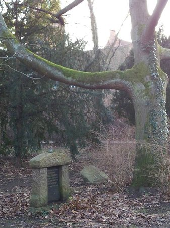 Assistenzfriedhof (Assistens Kirkegård): Мрачное фото)