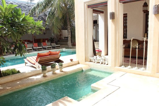 Lamu House Hotel: A good novel and an African Beauty cocktail make the pool area THE place to relax.