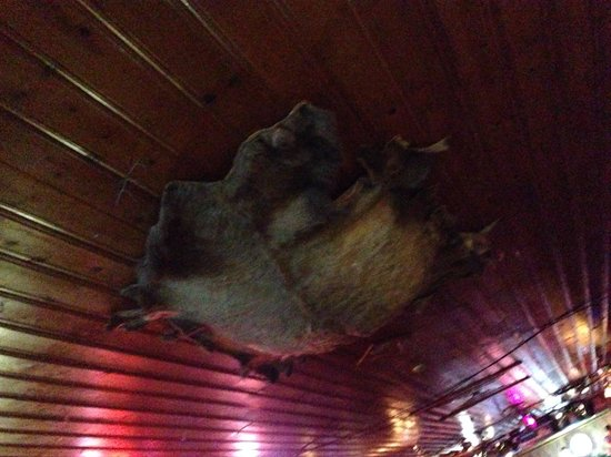 Bull o' the Woods: Some of the crazy decor.