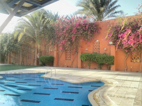 Sheraton Miramar Resort El Gouna: Kids pool
