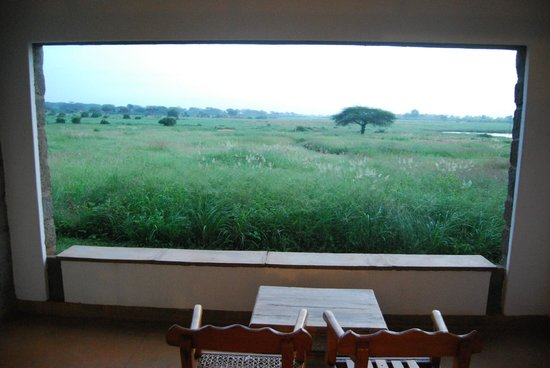Voi Wildlife Lodge: Vista sulla savana