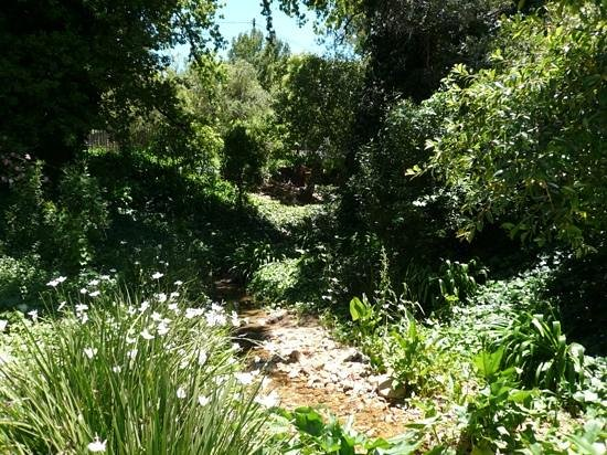 The Villas at Le Franschhoek: The stream next to our villa