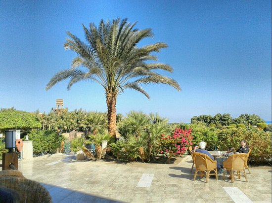 Sheraton Miramar Resort El Gouna: View while having breakfast