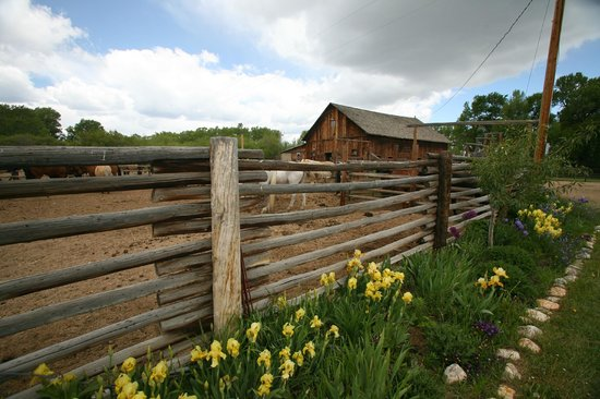 Vee Bar Guest Ranch: Corrals in the spring