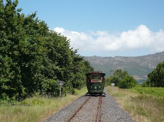 The Villas at Le Franschhoek: The wine train - great fun