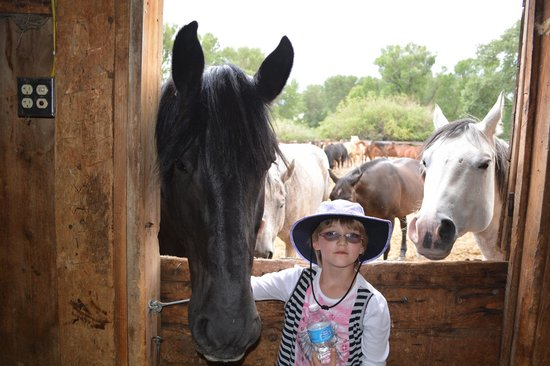 Vee Bar Guest Ranch: Visiting the horses at the barn