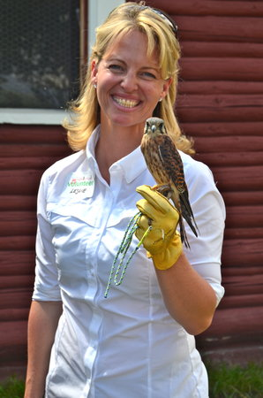 Teton Raptor Center : a TRC volunteer with her trained American Kestrel (Photo by Terry Moon)