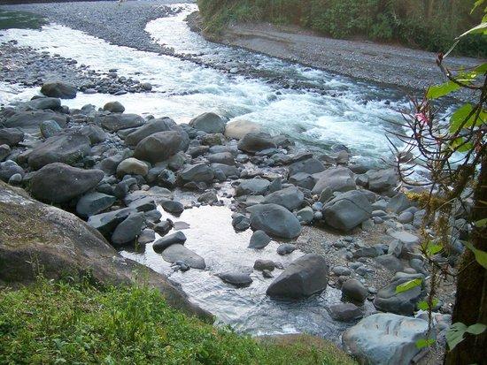 Rios Tropicales Lodge : river