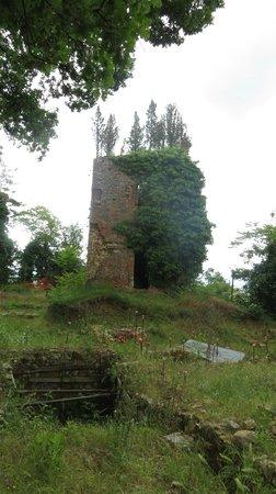 Borgo dei Cadolingi: Ruderi del Castello di Varna