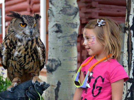 Teton Raptor Center: A young visitor meets a new friend at TRC's annual RaptorFest (Photo by Terry Moon)