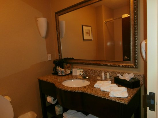 Comfort Suites Palm Bay: Bathroom vanity