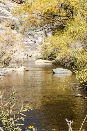 Sabino Canyon: Beautiful scenery near stop 8
