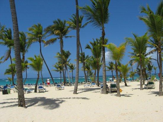 ClubHotel Riu Bambu : Amazing beach