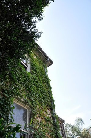 TARA Guest House: Looking up from the garden