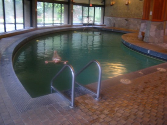 Harrison Hot Springs Resort & Spa : indoor hot lap pool