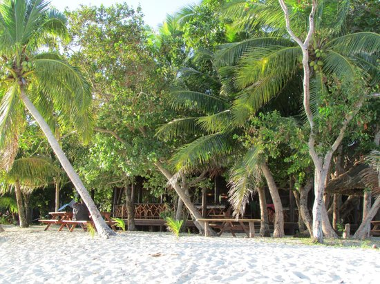 Leleuvia Island Resort: Open dining area hidden in the palms but with great views of the ocean.