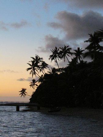 Leleuvia Island Resort : Beautiful island sunset in the palm trees.