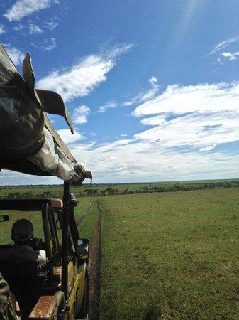 Olare Mara Kempinski Masai Mara: Olare Mara Kempinski Game Drive