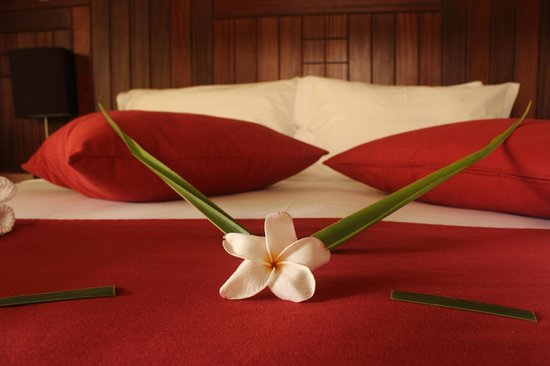 La Belle Tortue Lodge : We got this beautiful welcome with flowers on our bed - so pretty!