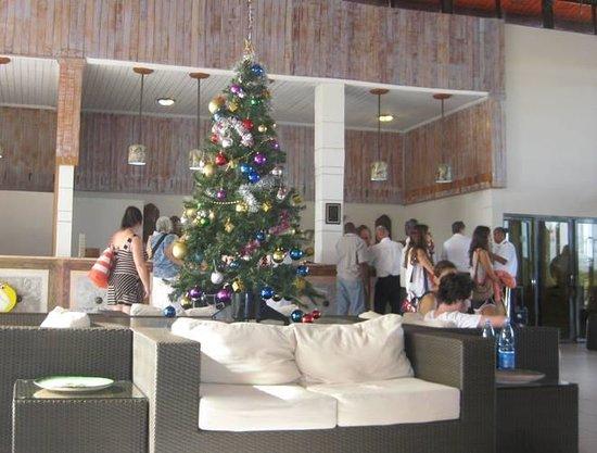 Hotel Pelicano: Reception