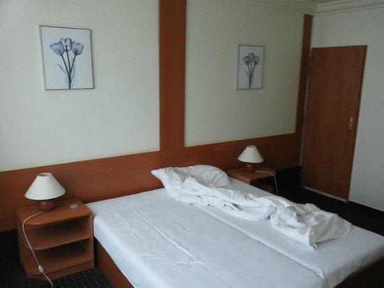 TOP HOTEL Praha: Room