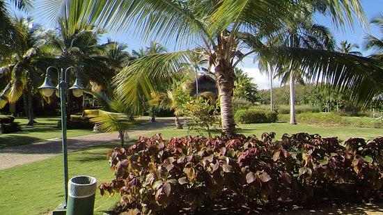 Tropical Princess Beach Resort & Spa: Jardim do Hotel