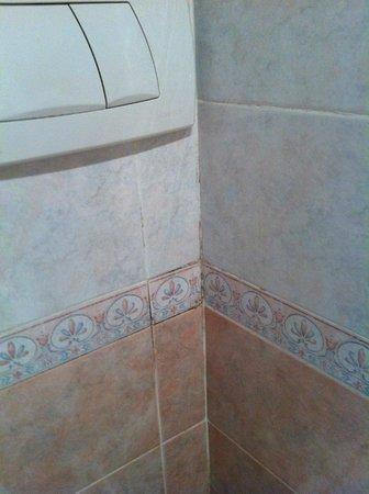 Grand Hotel Hermitage: il rigo tra le mattonelle del bagno