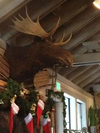 Rosie's Cafe: Where's the rest of that moose?  Rosie's in Tahoe City!