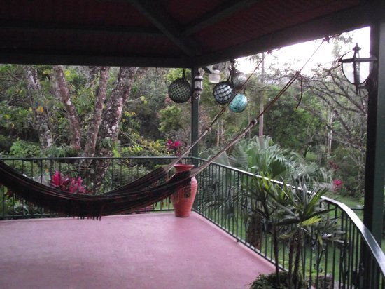 The Golden Frog Inn: Relax in a Hammock