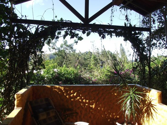 The Golden Frog Inn : View form Patio